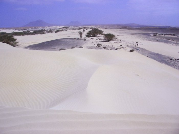 Boa Vista with vista verde tours